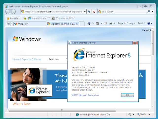 Internet Explorer 8 ScreenShoot