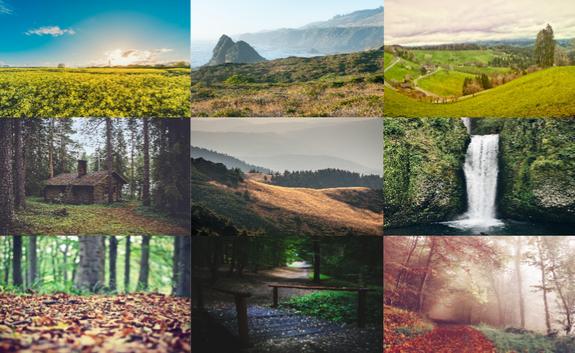 صور طبيعة غابات وجبال 2016