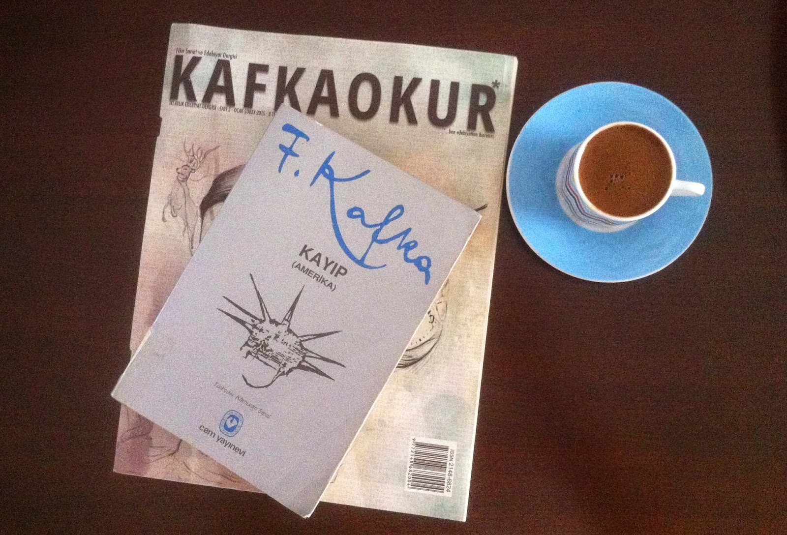 a chronicle of karl rossmans life by franz kafka Weeklythread discussion of the works of franz kafka former has a lot more at stake--his life hangs in the balance parade karl watches from the.