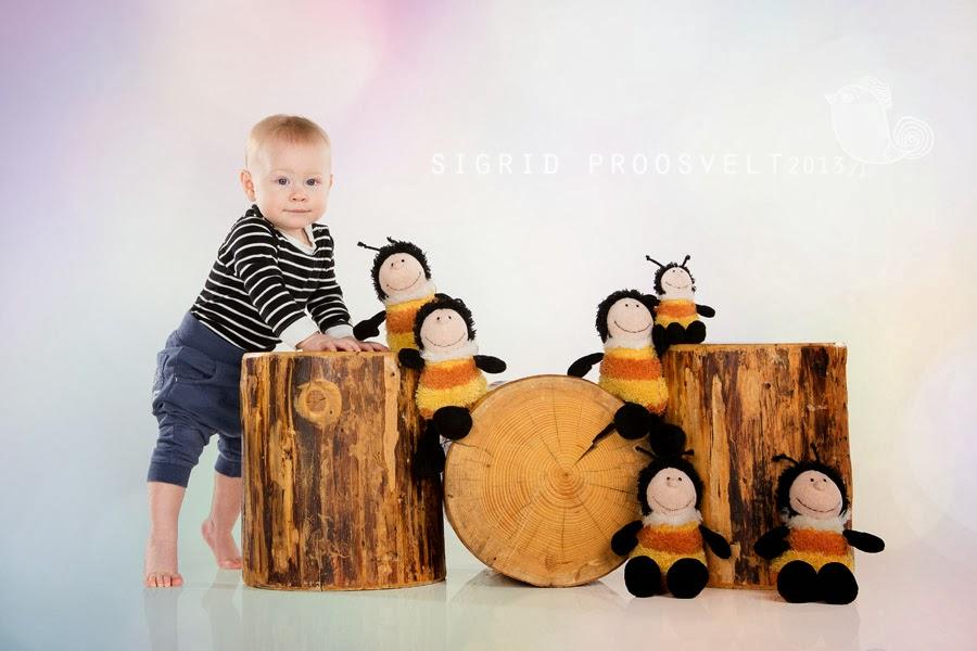 poiss-seisab-mesilased-fotostuudio