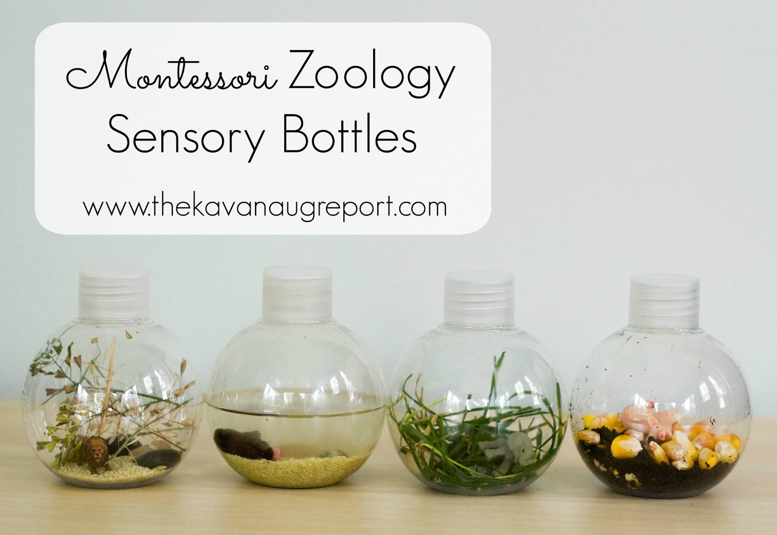 Zoology Sensory Bottles for Montessori Babies
