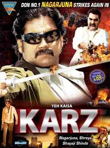 Yeh Kaisa Karz (2013) Hindi DVDRip Watch Full Movie Online