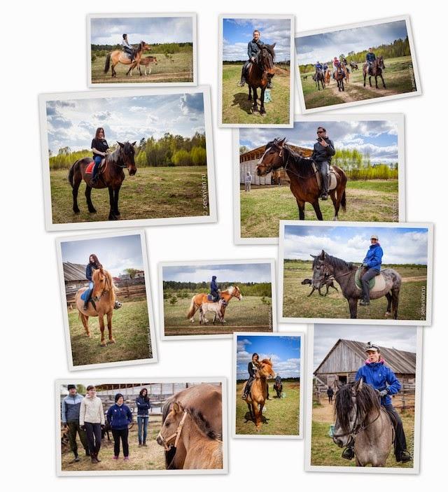 Конные прогулки вдоль Волги и отдых в деревне на праздники