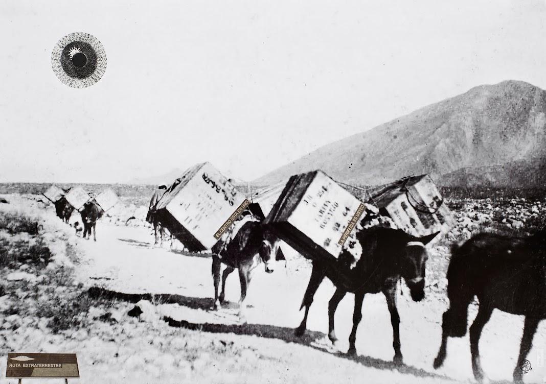 Archivo Caminante
