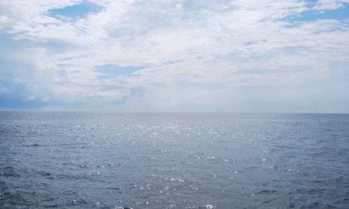 The ocean 2013