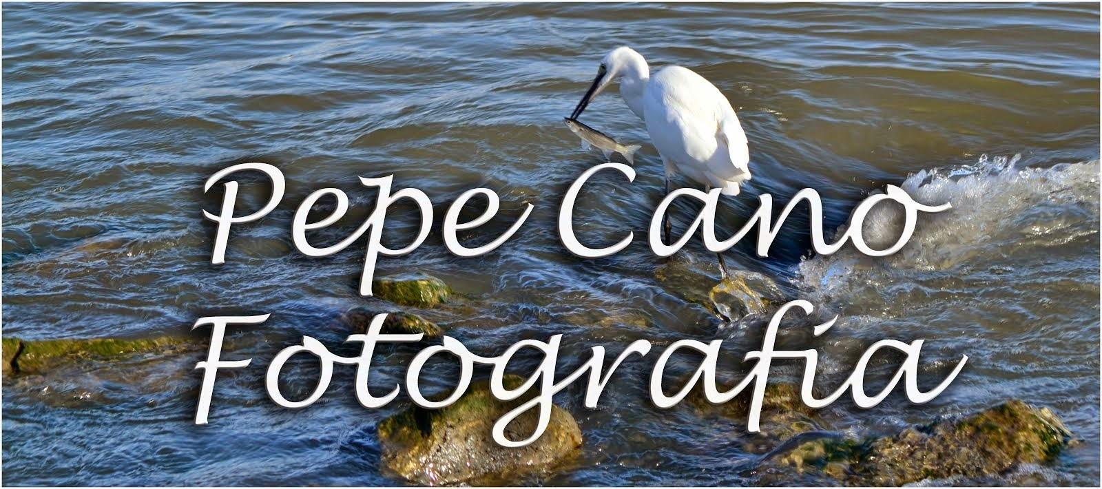 Pepe Cano Fotografia