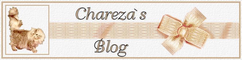 Chareza's Blog
