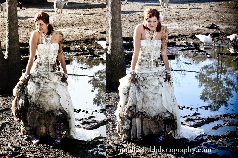 Gray Cat Vintage Trash The Dress Safety Amp Sentiment