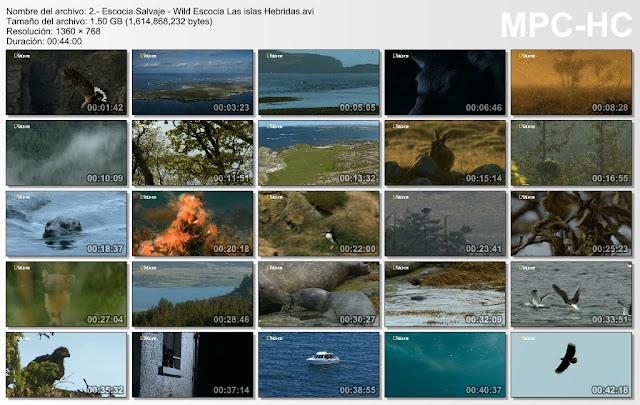 6GB|NATGEO|Escocia Salvaje|HD 720p|4-4|Mega|Taykun