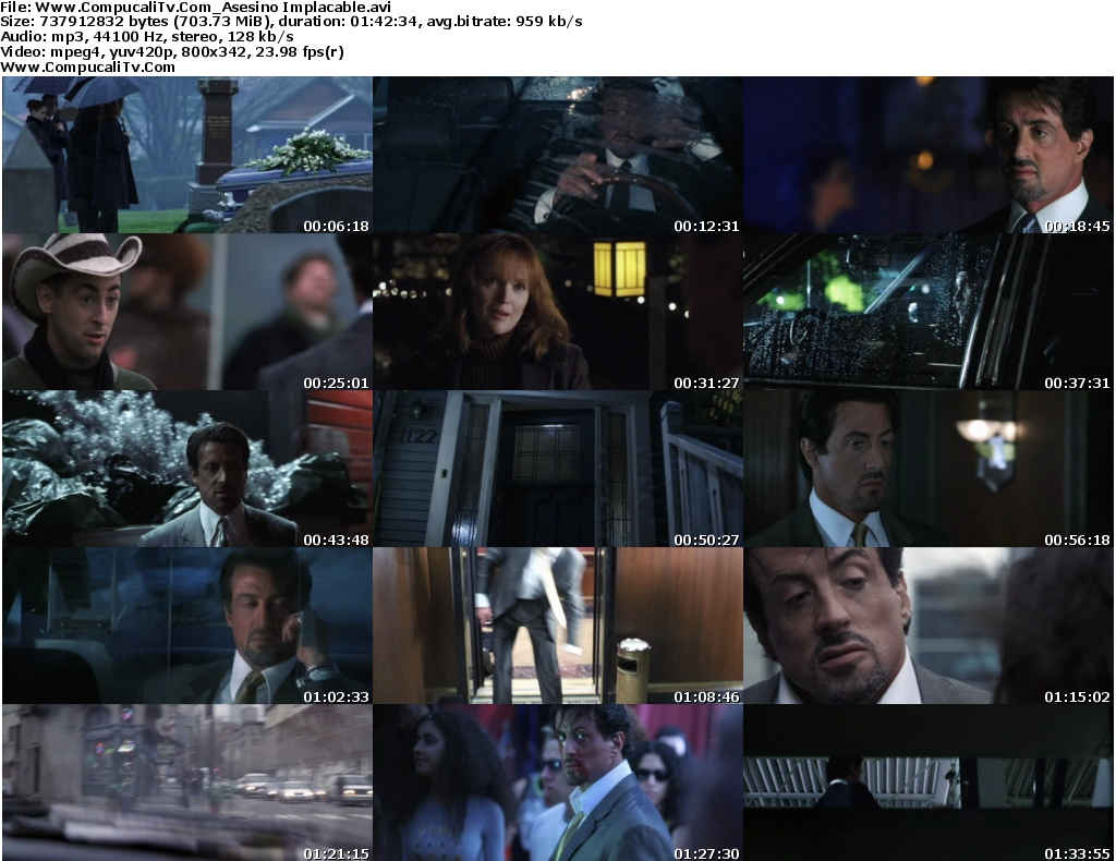 Asesino Implacable DVDRip [Español Latino] Descargar 1 Link