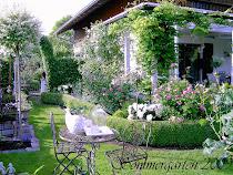 Mein Garten - mein Paradies!