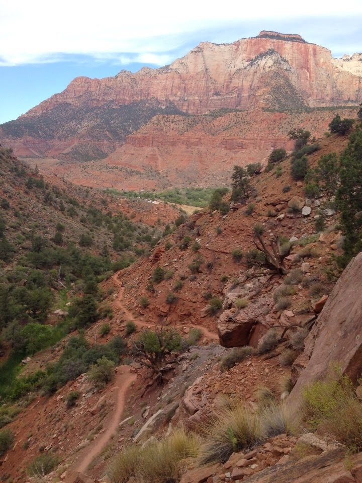 Zion trail run.