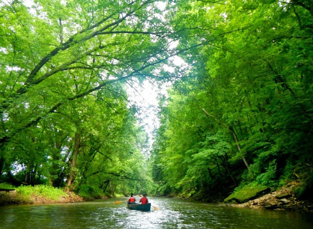 lone canoe along the root river state water trail