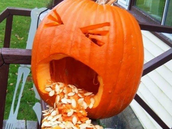 11 ideas para decorar calabazas de halloween trucos de - Disenos de calabazas de halloween ...