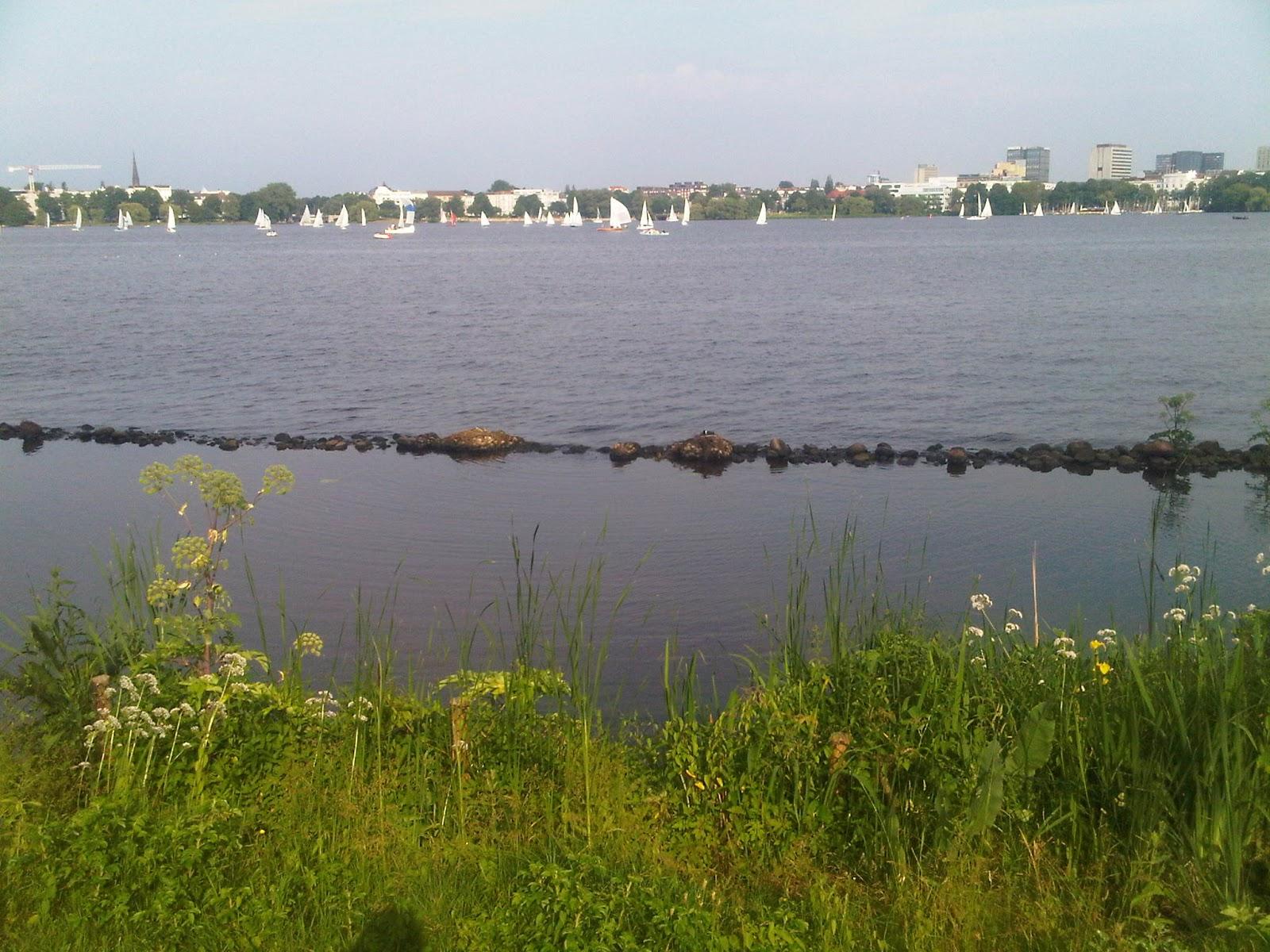 Außenalster mit Grünstreifen und Steinmauer im Wasser