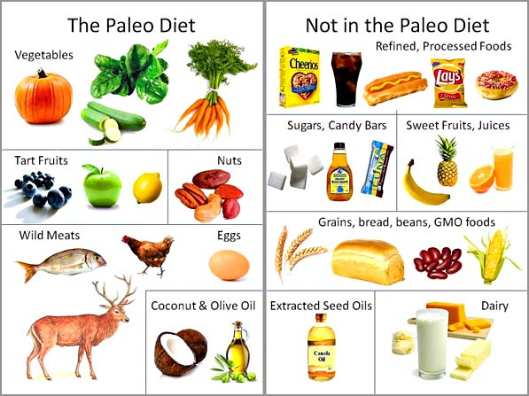 Bulletproof coffee and diet vs paleo after 3 years johnnyfd as the perfect diet and ive found a ton of pros and cons of both eating paleo and bulletproof here is the update on what has worked and what hasnt malvernweather Choice Image