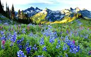 20 fotografías de paisajes para la portada de tu  (paisajes portada facebook www)