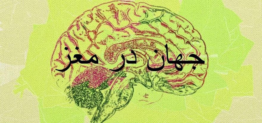 جهان در مغز