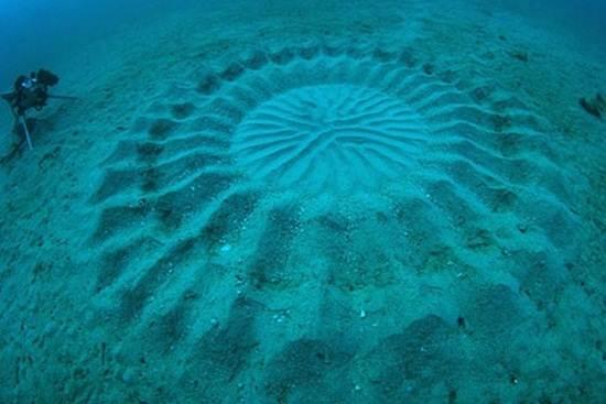 underwater-crop-circle-japan
