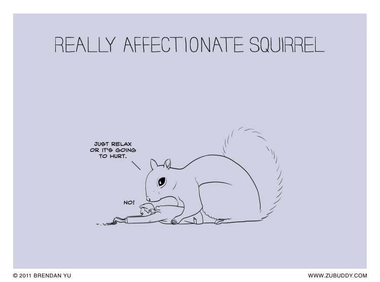 Really Affectionate Squirrel