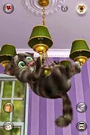 Trò chơi con mèo nói theo