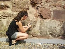 Midiendo Humedad del Muro