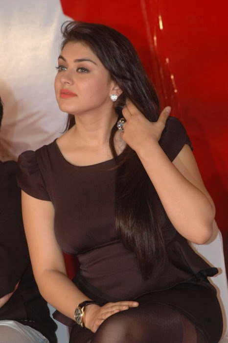 Hansika Motwani Wallpapers gallery pictures