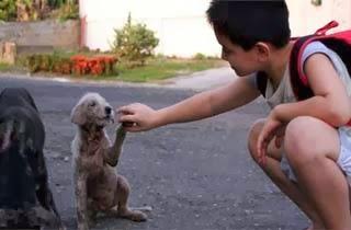 Kebaikan Hati Seorang Bocah Buat Ayahnya Terpana