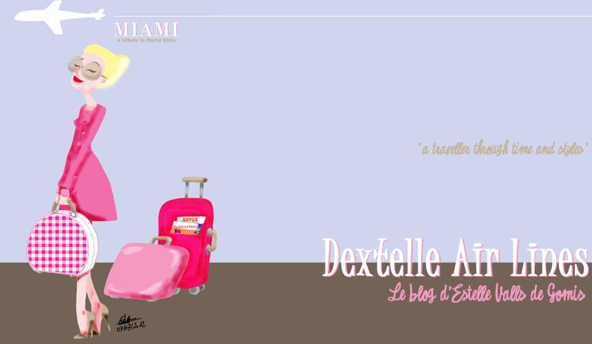 Dextelle Air Lines : Illustrations et Fictions par Estelle Valls de Gomis