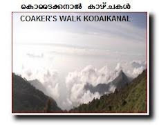 KODAIKANAL COAKER'S WALK