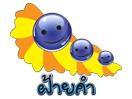 Faikham TV Thailand