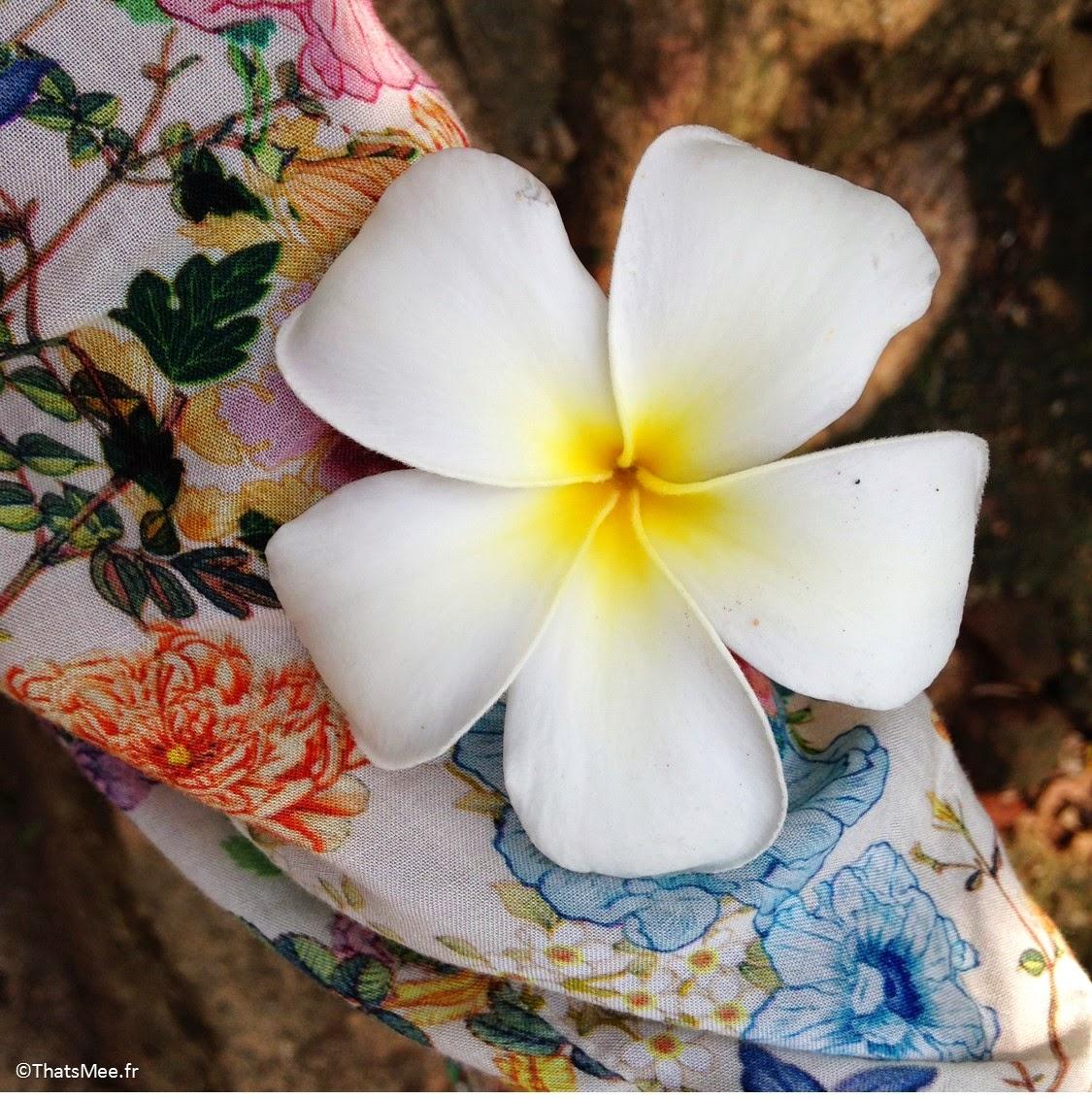 Fleur de frangipanier protection bouddhisme hindouisme Temple de Mihintale Sri-Lanka