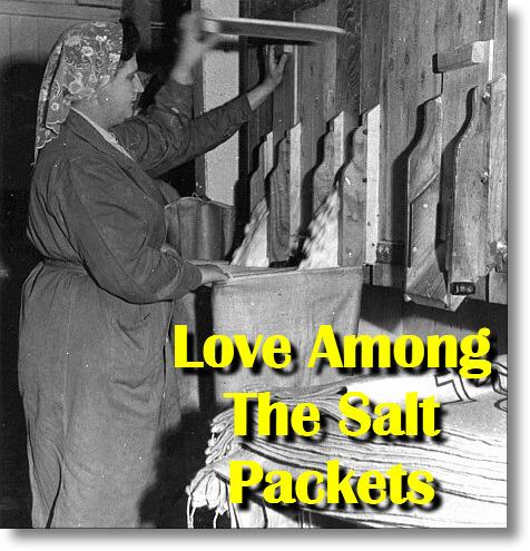 NEW! LOVE AMONG THE SALT PACKETS!