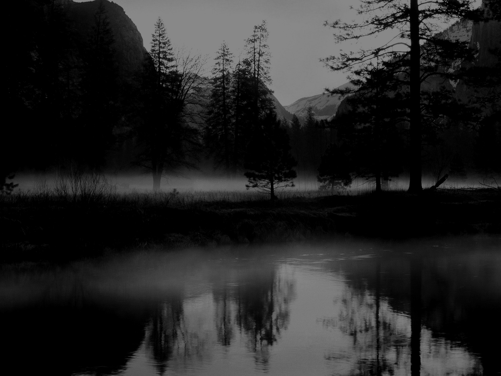 Abstract Dark Nature HD Wallpapers – wallpaper202