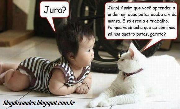 jura.png (580×352)