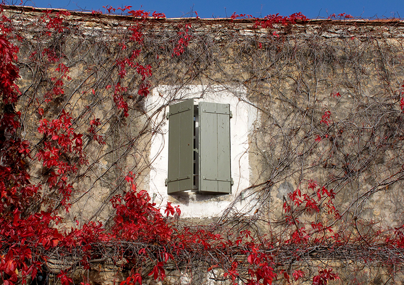 Lost in Arles: Red Leaves
