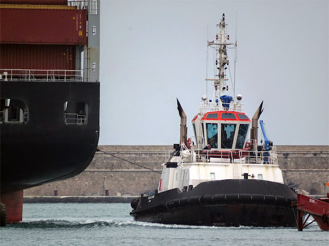 Tug Porto di Livorno, IMO 9393113, Livorno