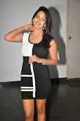 Pavani Reddy Glamorosu Photo shoot-thumbnail-17