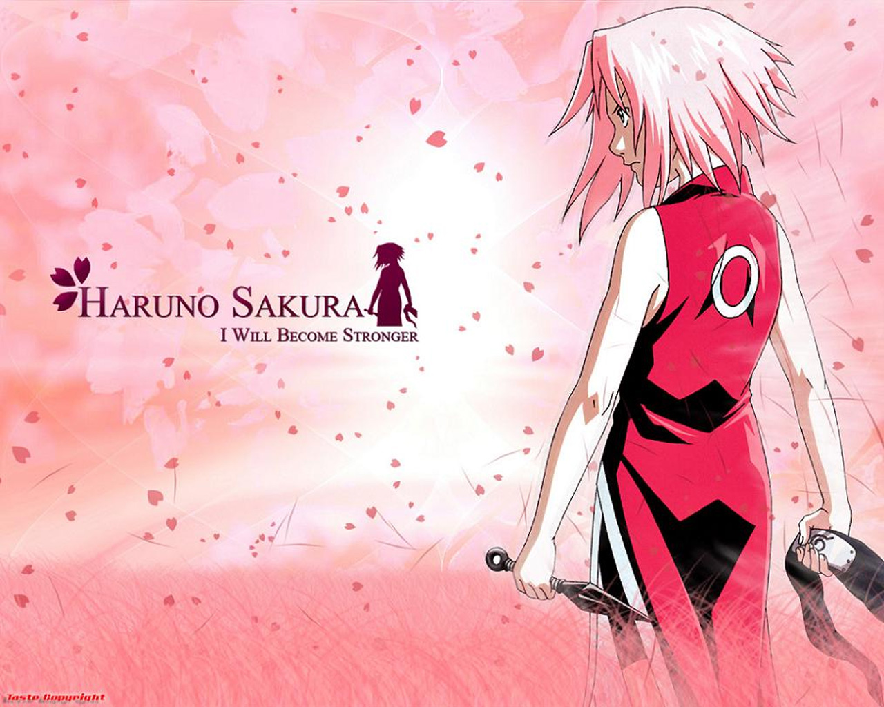 Medical Ninja Under The Guidance Of Tsunade Sakura Haruno Wallpaper