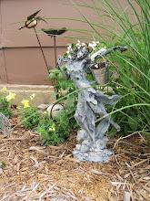A Fairy Garden. . .