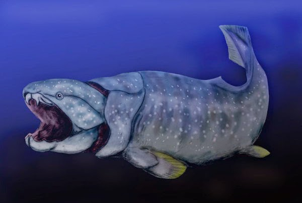 Dunkleosteus, kepunahan spesis