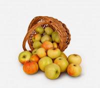 Apple Weight Loss Diet