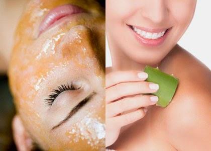 Công dụng trị nám da từ cây lô hội