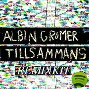 Tillsammans Dj Large Remix (2011)
