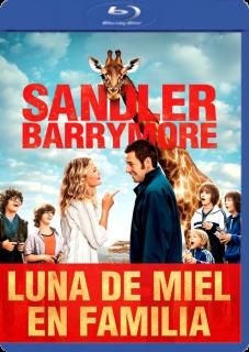 Luna De Miel En Familia (2014) Dvdrip Latino Imagen1~1
