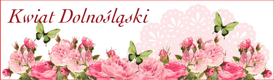 Kwiat Dolnośląski