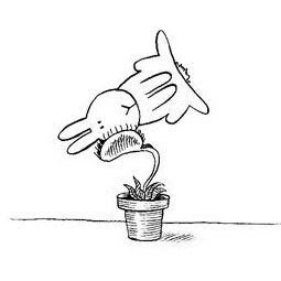 Conejito suicida