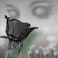 Poesía a un amor imposible