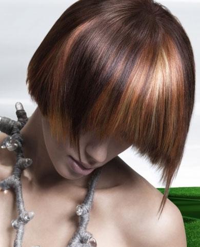 Stylish Honey Hair Highlights 2014