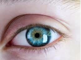 Alimentos saludables para tus ojos
